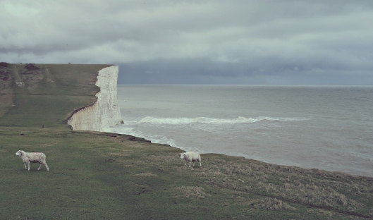 seven sisters seaford united kingdom england