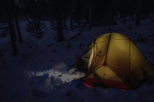 teltinss.jpg